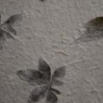 carta-foglie-gelso