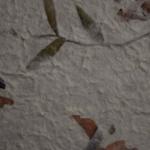carta-petali-misti-e-foglie